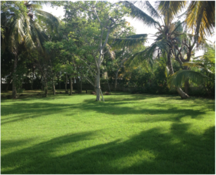 Large plot in a gated community close to the beach (IVB-1)